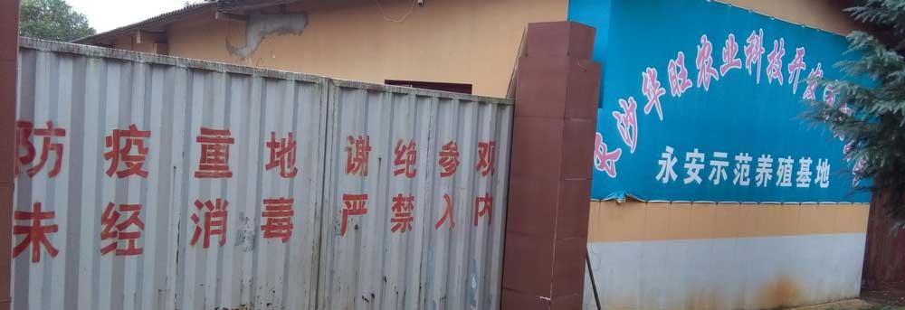 长沙华旺养殖场